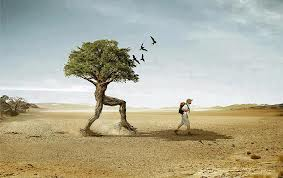If you don't like where you are, move. You are not a tree!