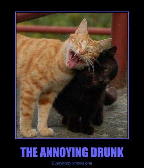 Annoying drunk meme
