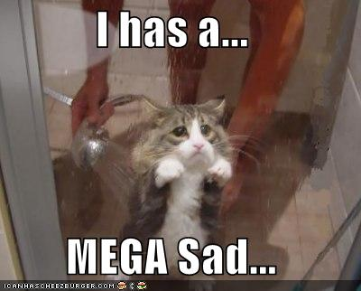 I has a mega sad - cat